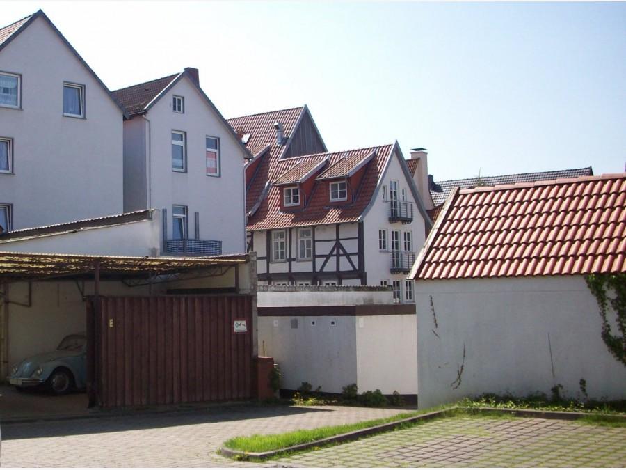 Single buckeburg