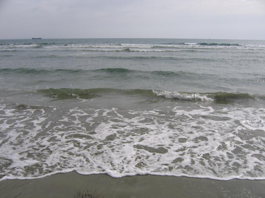 Температура моря в ларнаке