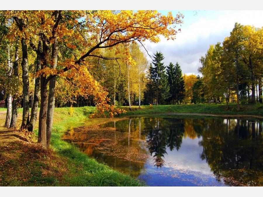 Осень  уголком 103