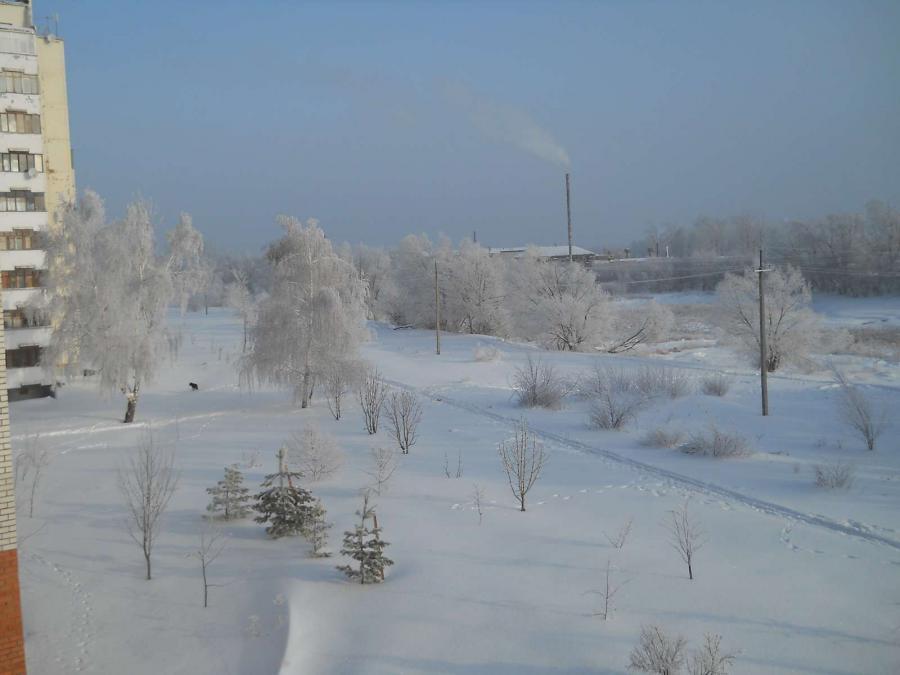 димитрий, фото димитровграда зимой довольна