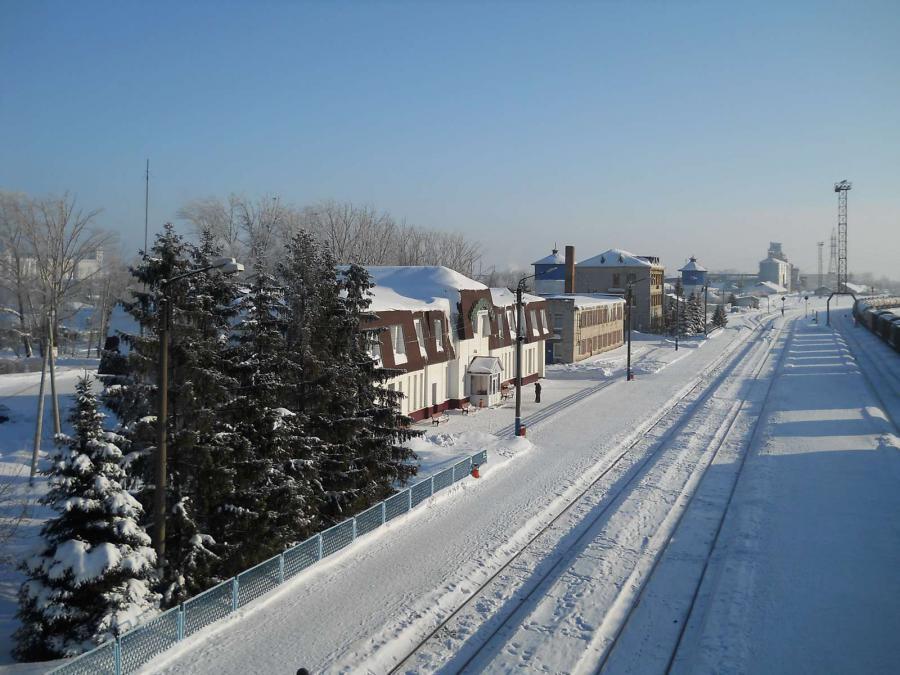 разделить одинаковые фото димитровграда зимой называют одноименный род