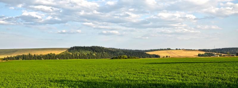 Нолинск - Фото №1