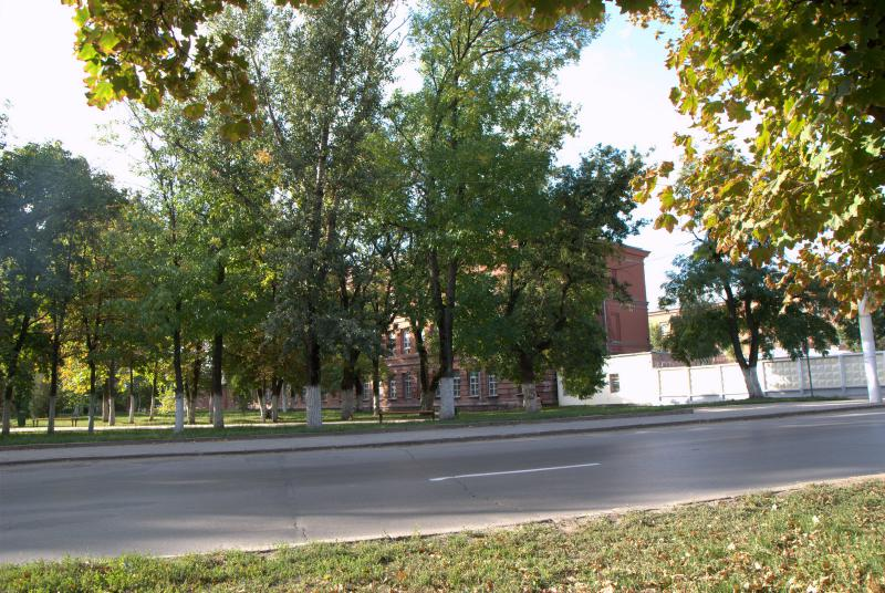 Пересечение с ул кривошлыкова
