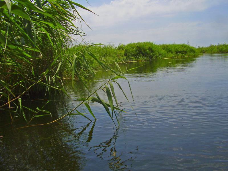 река орь рыбалка