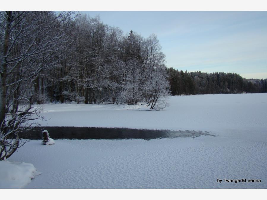 озеро долгое рыбалка ленинградская область