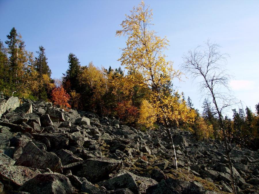 Фото гробовой горы свердловской области