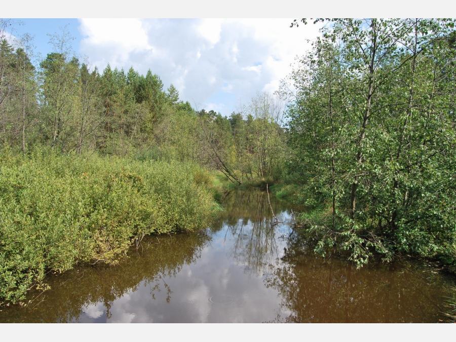 Река черная рыбалка свердловская область