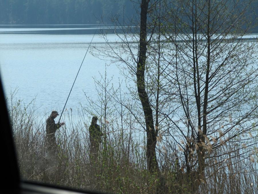 рыбалка на рипуса тургояк